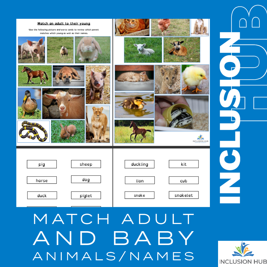 Adult baby animal match